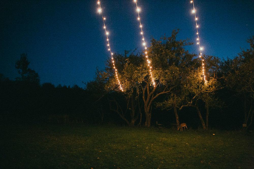 catskill-wedding-photographer (123).jpg