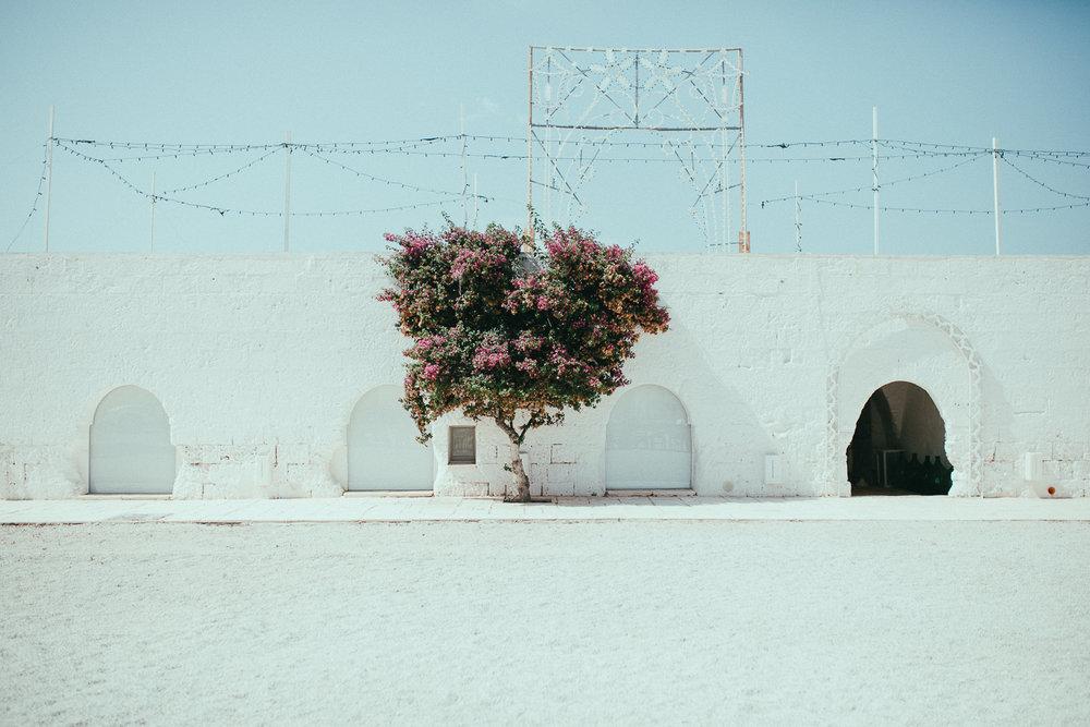 masseria-potenti-wedding-photographer (10).jpg
