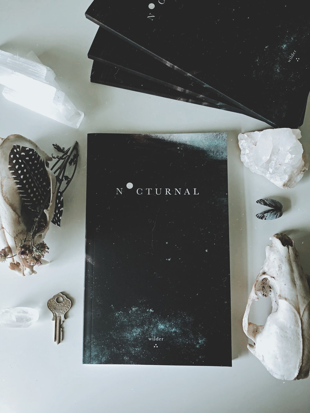 Nocturnal - Nocturnal is a collection of words and imagery inspired by darkened skies and sleepless nights. it is a journey of healing and self-discovery whether love stays or leaves. it is dreaming with your eyes wide open while the rest of the world is hiding.•