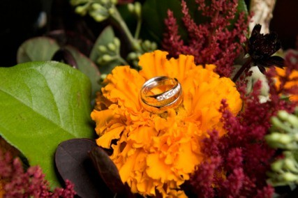 Winship Productions Wedding Rings www.patrickhallphotography.com
