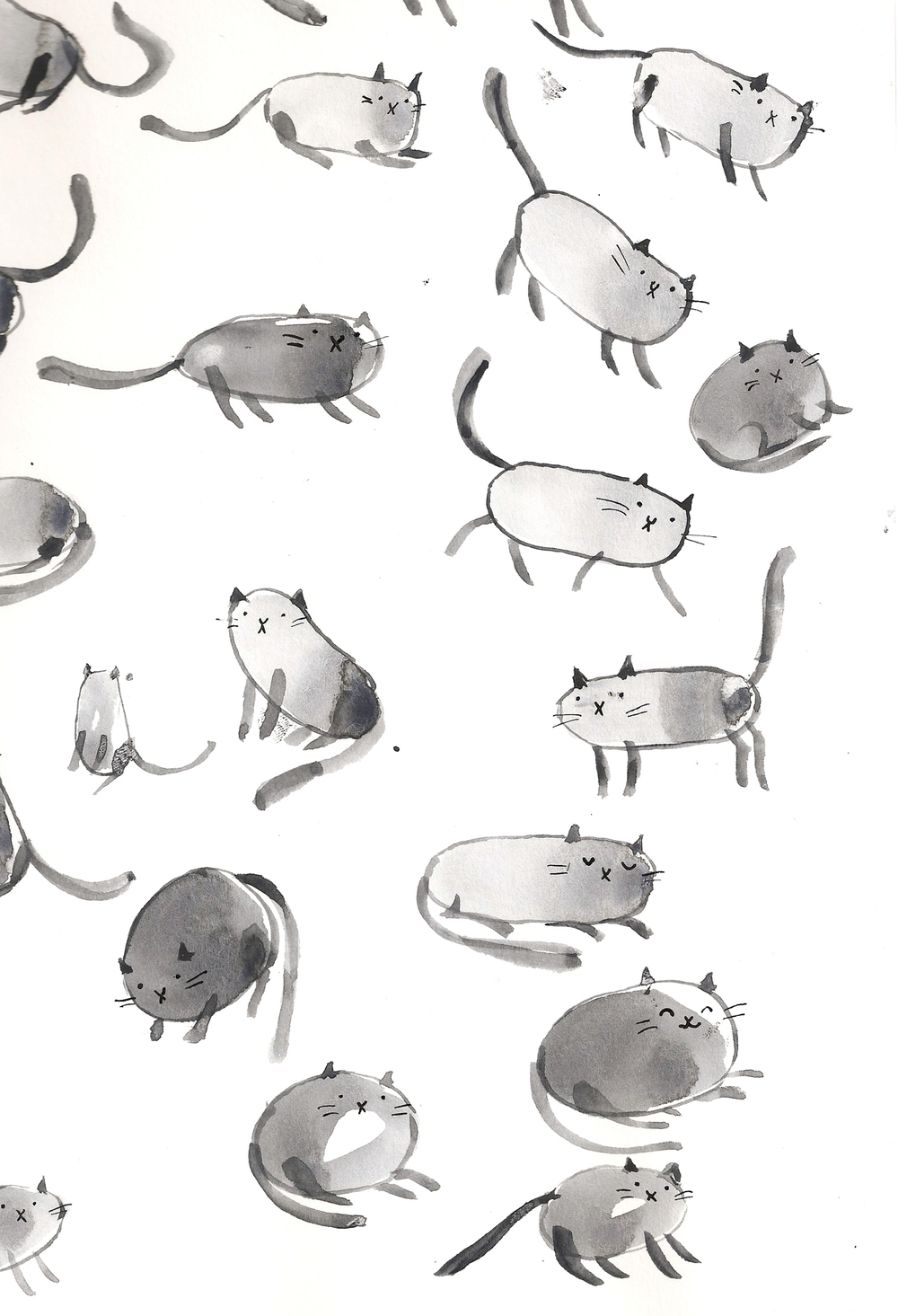 Cat page