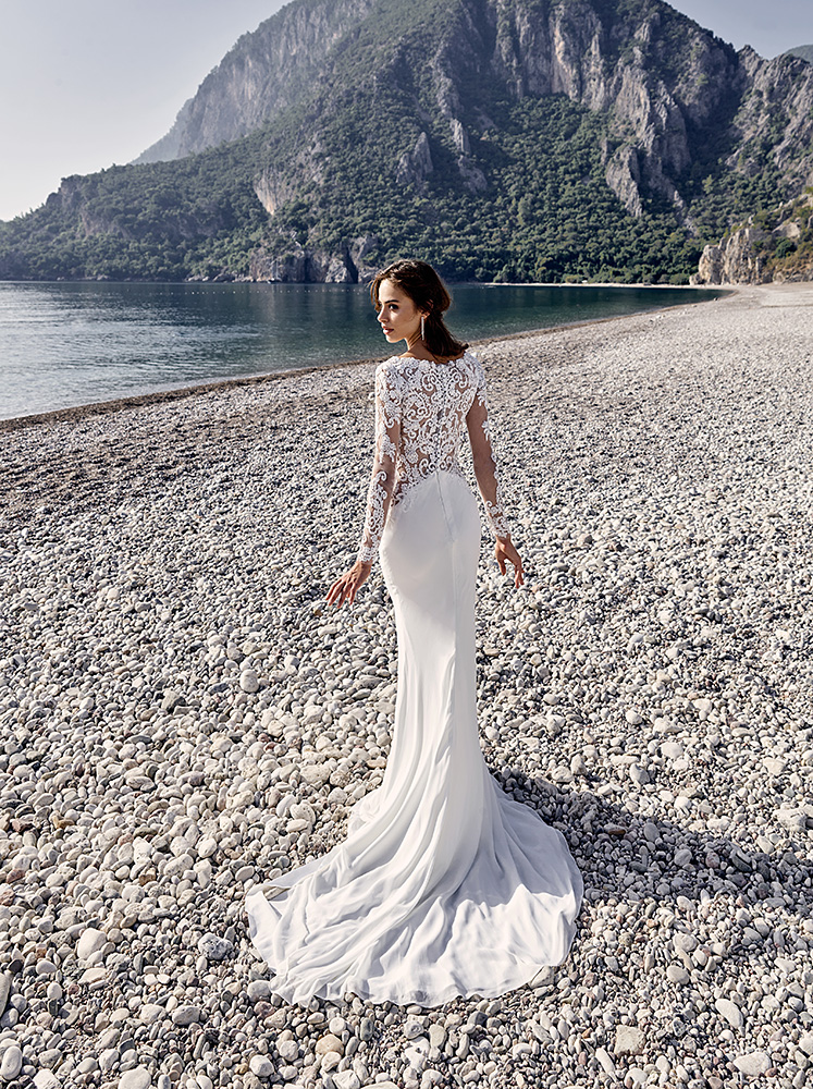 Sexy long sleeves sheer back bridal gown