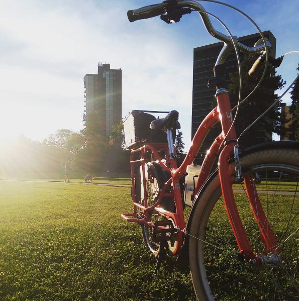 Bike to the park on my lunch break (that I can take whenever I want)!