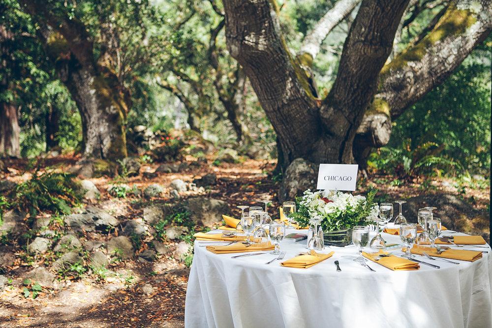 marin_county_wedding_photography_lyn_carl_ebony_siovhan_bokeh_photography_52.jpg