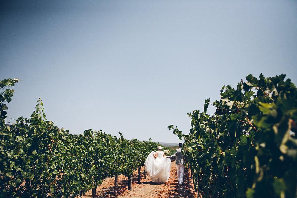 napa_winery_wedding_photography_margit_rich_ebony_siovhan_bokeh_photography_24.jpg