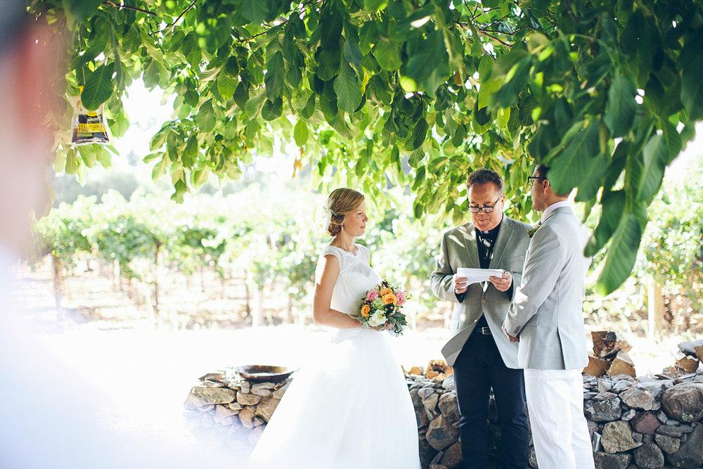 napa_winery_wedding_photography_margit_rich_ebony_siovhan_bokeh_photography_70.jpg