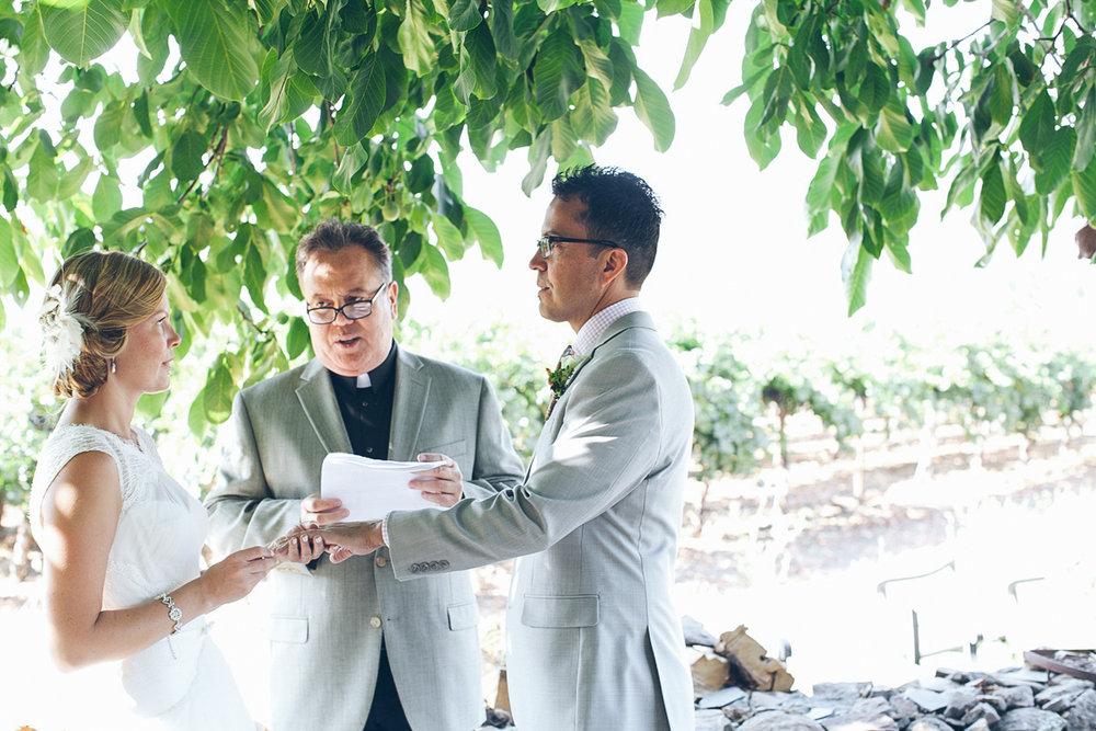 napa_winery_wedding_photography_margit_rich_ebony_siovhan_bokeh_photography_73.jpg