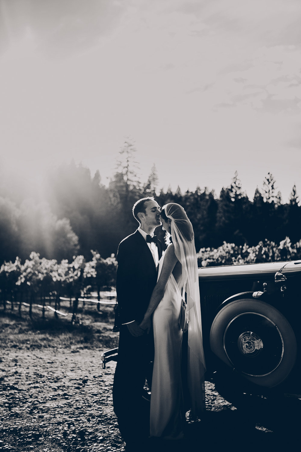 miraflores_winery_wedding_photography_ian_melissa_ebony_siovhan_bokeh_photography_47.jpg