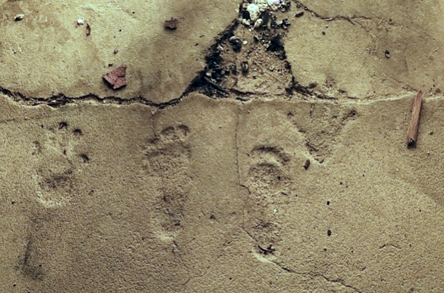 the-ruin-pioneertown-footprints-on-the-wall.jpg