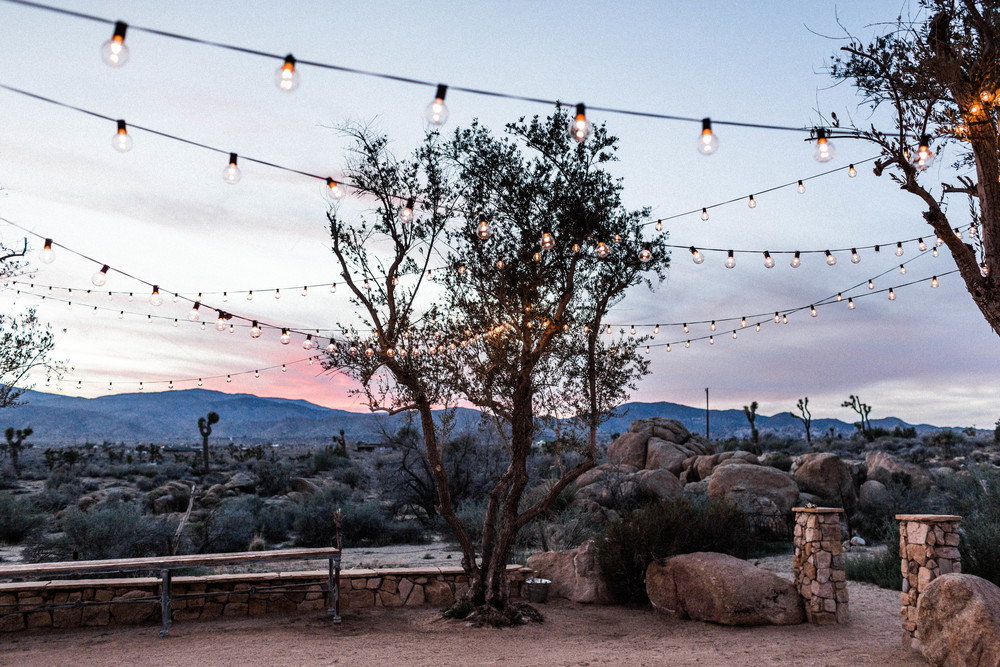 joshua-tree-wedding-editorial-photography-by-sarah-falugo-photography-7730.jpg