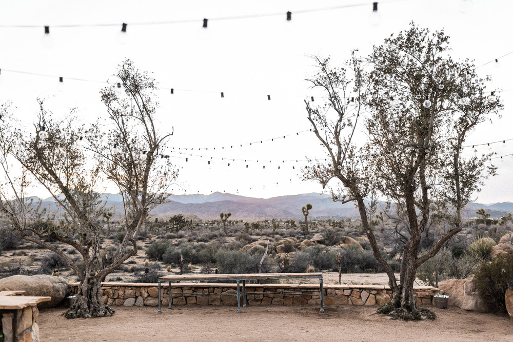 joshua-tree-wedding-editorial-photography-by-sarah-falugo-photography-7615.jpg