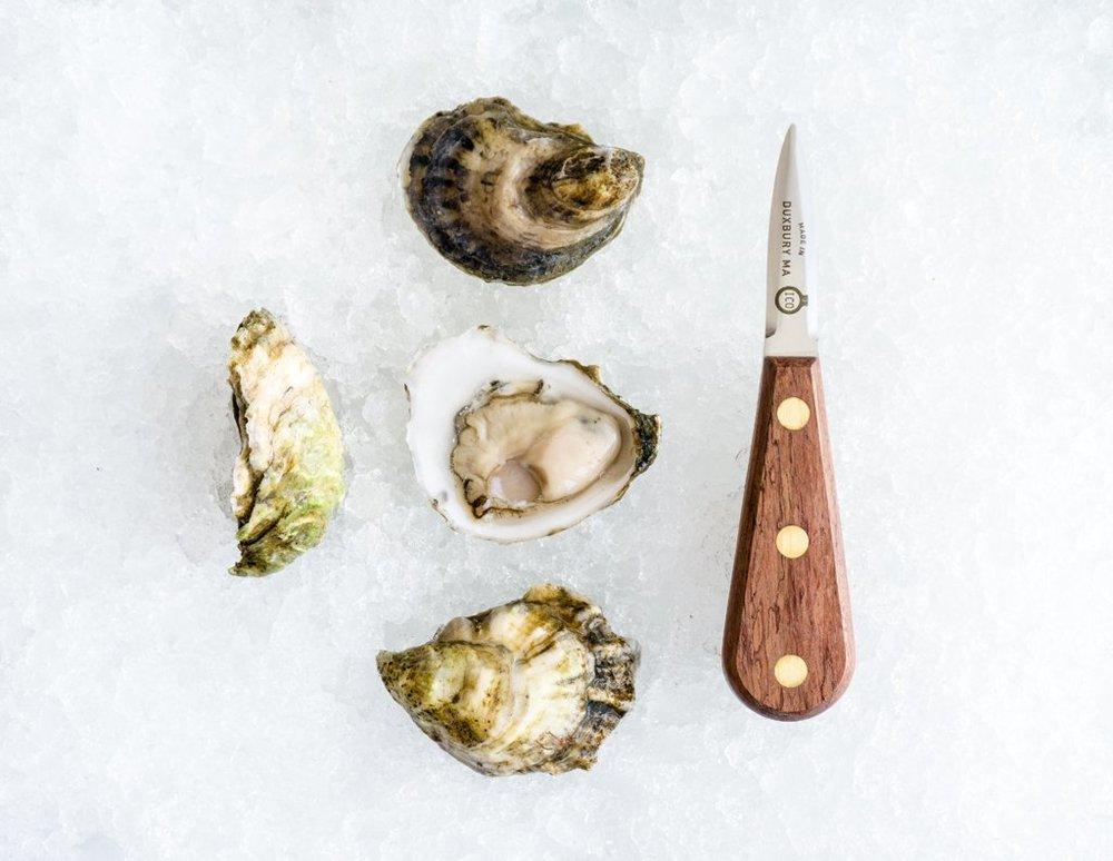 oyster knife.jpg