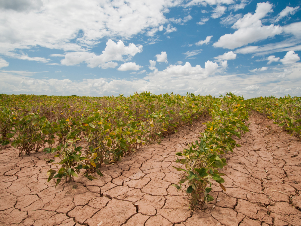 USDAgov/cc2/flickr