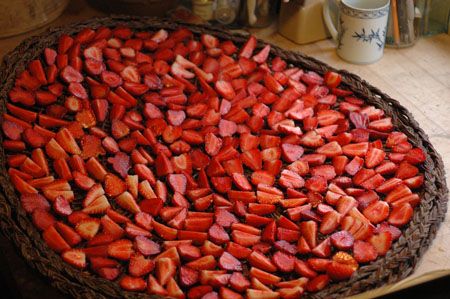 Drying strawberries.  This was in the spring.  I just forgot to put it in the last post.  Dried strawberries are intensely flavored, but I can't say they are super fun to just eat.  I haven't really figured out what to do with them yet.  I'll be sure to let you know if I break the dried strawberry code, and let us know if you already have.