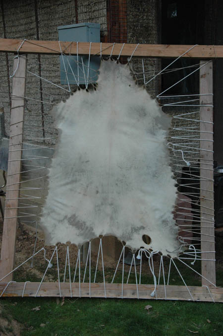 goat hide stretched in frame to dry.  This is mostly for making miniature drums, but also any other crafty things that come up.
