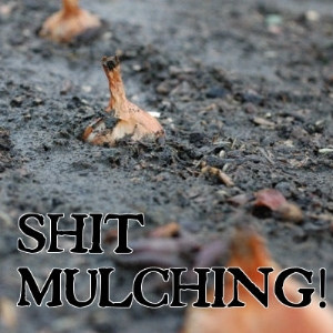 Shit mulching with manure mats!