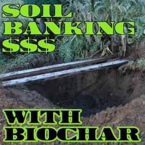 Soil banking with biochar$$$