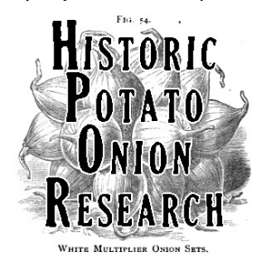 Cool old stuff about potato onions
