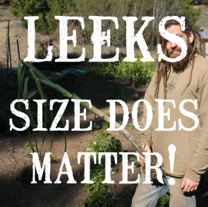 Leeks, Size Does Matter, and So Does Shape