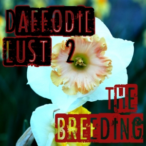 Daffodil Lust II: Chronicles my entry into daff breeding