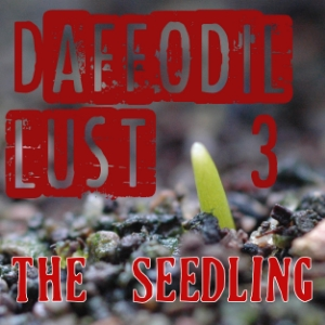 Daffodil Lust III: The Seedling
