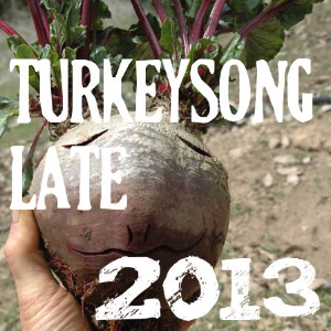 Turkeysong, the year in pictures 2013 Winter/Spring
