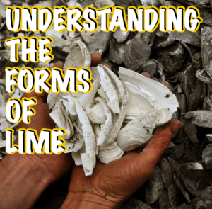 Understanding the various forms of LIME and what they can be used for