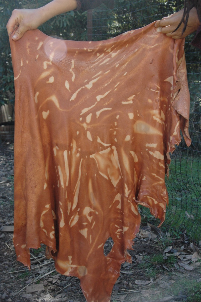 A skin stuffed into a tub of tanning liquor and left overnight.  More time would not have improved this situation.  The skin would have used up all the liqour and even if more were added, it would still not reach those folds unless the skin was stirred at intervals.  This is not tie-dyeing.  Tanning liquors must be allowed to act on the skin.  A similar effect can happen in other solutions, but it's very obvious in this one.