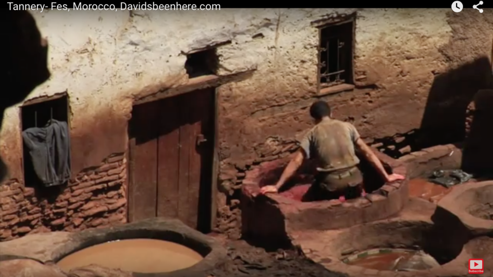 This is a still I lifted from a cool video of an ancient Moroccan tannery that is probably still functioning just as it has for hundreds of years (or longer?). This worker is treading skins in a dye pit, but it could just as well be some other solution.  We have the luxury of taking a little longer but in many cases the more the skin is moved, the faster the solution can work on the skin.  In the case of dyeing like this it would also be necessary for even coloring.
