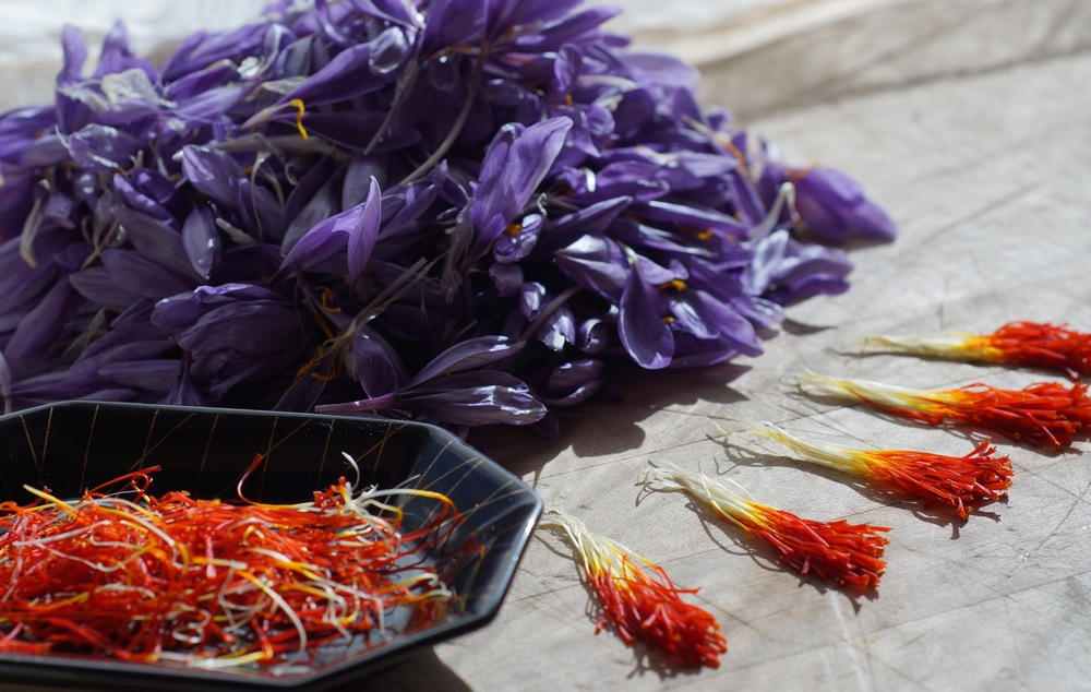Saffron!  Trust me, however much it costs, the person getting screwed is not the consumer!  Only three threads per flower, pulled out one flower at a time.