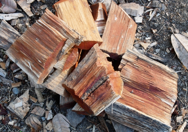 These oak chips were pretty light colored until they were rained on bringing the tannins out. Wood is fairly common source of tannin, but mostly just from a few species.