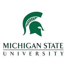 michiganstateuniversity.jpg