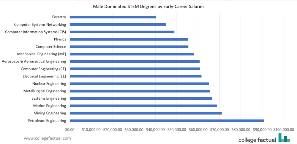 The top 15 most male-dominated STEM majors range in early-career salary from $40,000 to over $90,000.