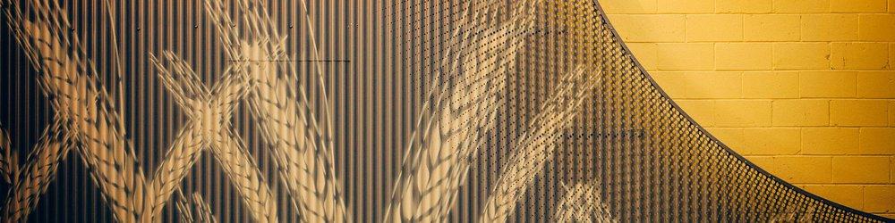 Web Banner_01.jpg