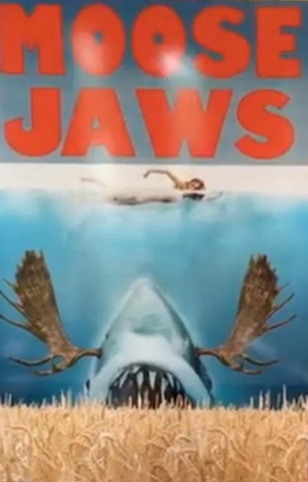 Download Filme Moose Jaws Baixar Torrent BluRay 1080p 720p MP4
