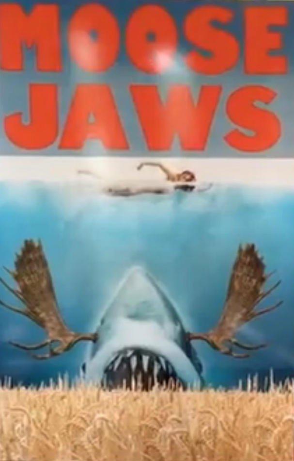 Download Filme Moose Jaws Baixar Torrent BluRay 1080p 720p MP4