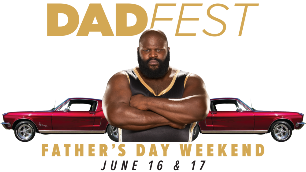 DadFest Landing Wide.png