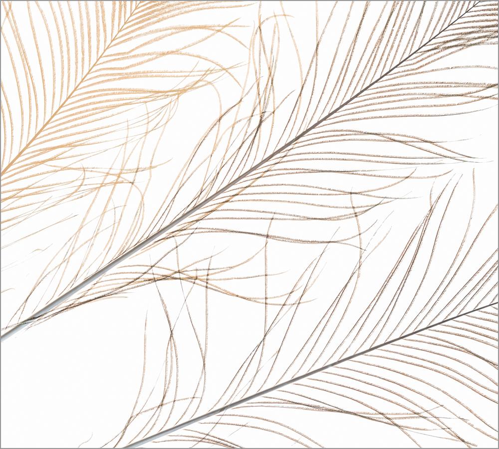 KM_Concept_21.jpg