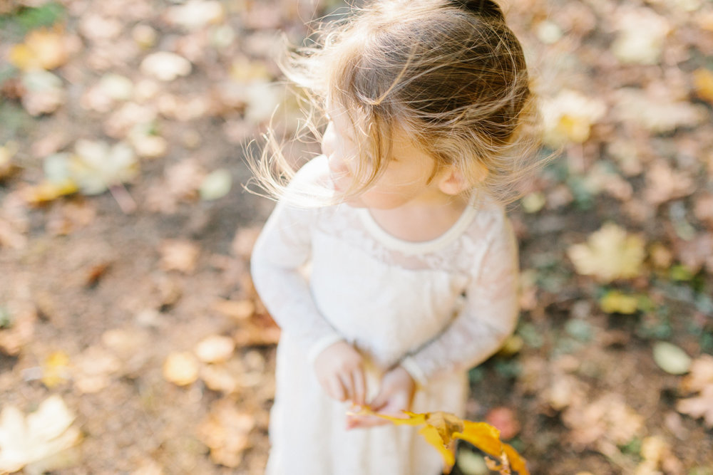 The most perfect fall photo shoot with toddler girl | What to wear to family pictures | Toddler girl in lace dress in woods and fields photo shoot | VSCO | Emma Rose Company | Toddler Outfit Inspiration | Long Lace Dress on Little Girl-23.jpg
