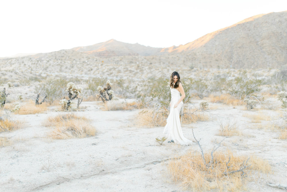 Palm Springs Desert Bridal Session | Non Traditional Wedding Inspiration | Destination Wedding Photography | Sunrise Palm Springs Session in Wedding Dress | Southern California Bride | So Cal Wedding | Emma Rose Company-9.jpg