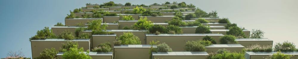 Build Your Modern Hanging Gardens of Babylon
