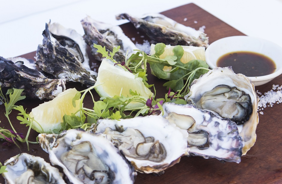 OYSTERS (smaller).jpg