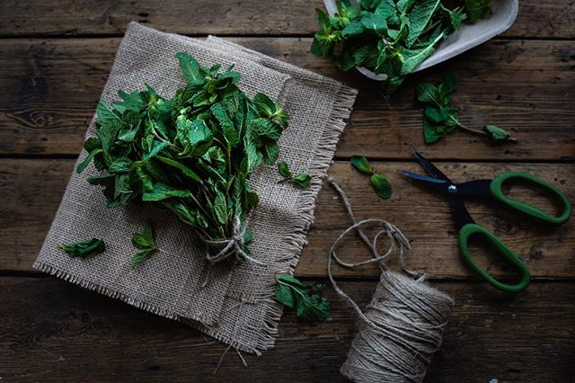 Fresh mint to brighten a cold and dreary winter day. ☁️ It's just calling to be put in a hot cuppa ☕️🍃, don't you think? . . . #mint #minttea #foodphotography #gloobyfood #moodyfood #mood #herbs #onthetable #feedfeed #huffposttaste
