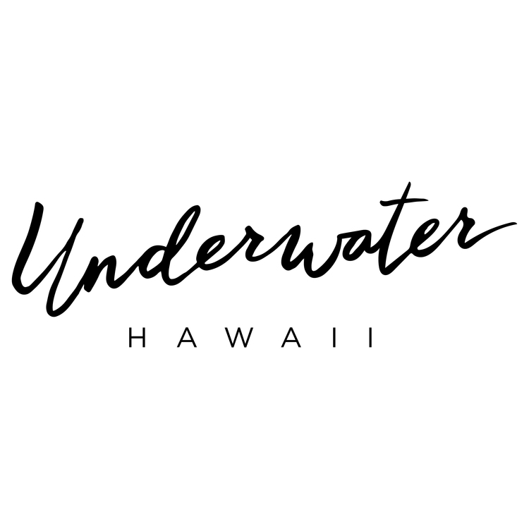 underwater hawaii