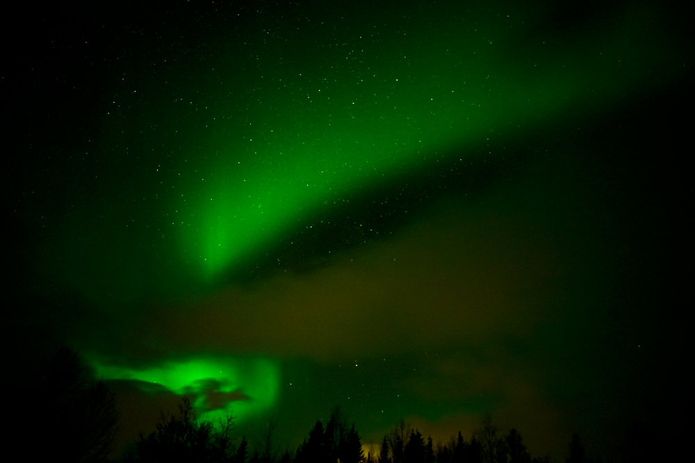 Tromso (4 of 1).jpg