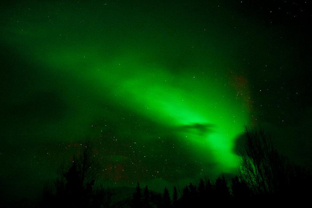 Tromso (5 of 1).jpg