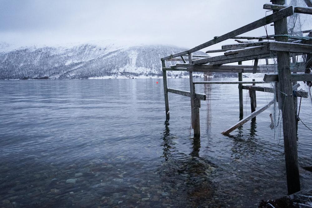 Tromso (20 of 1).jpg
