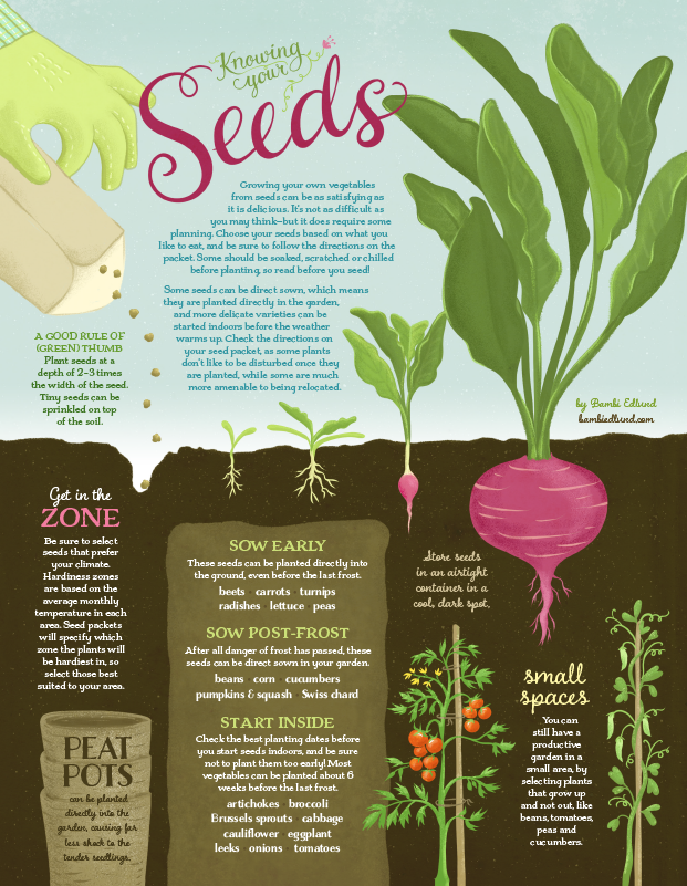 EdibleInk_Seeds_General_621.png