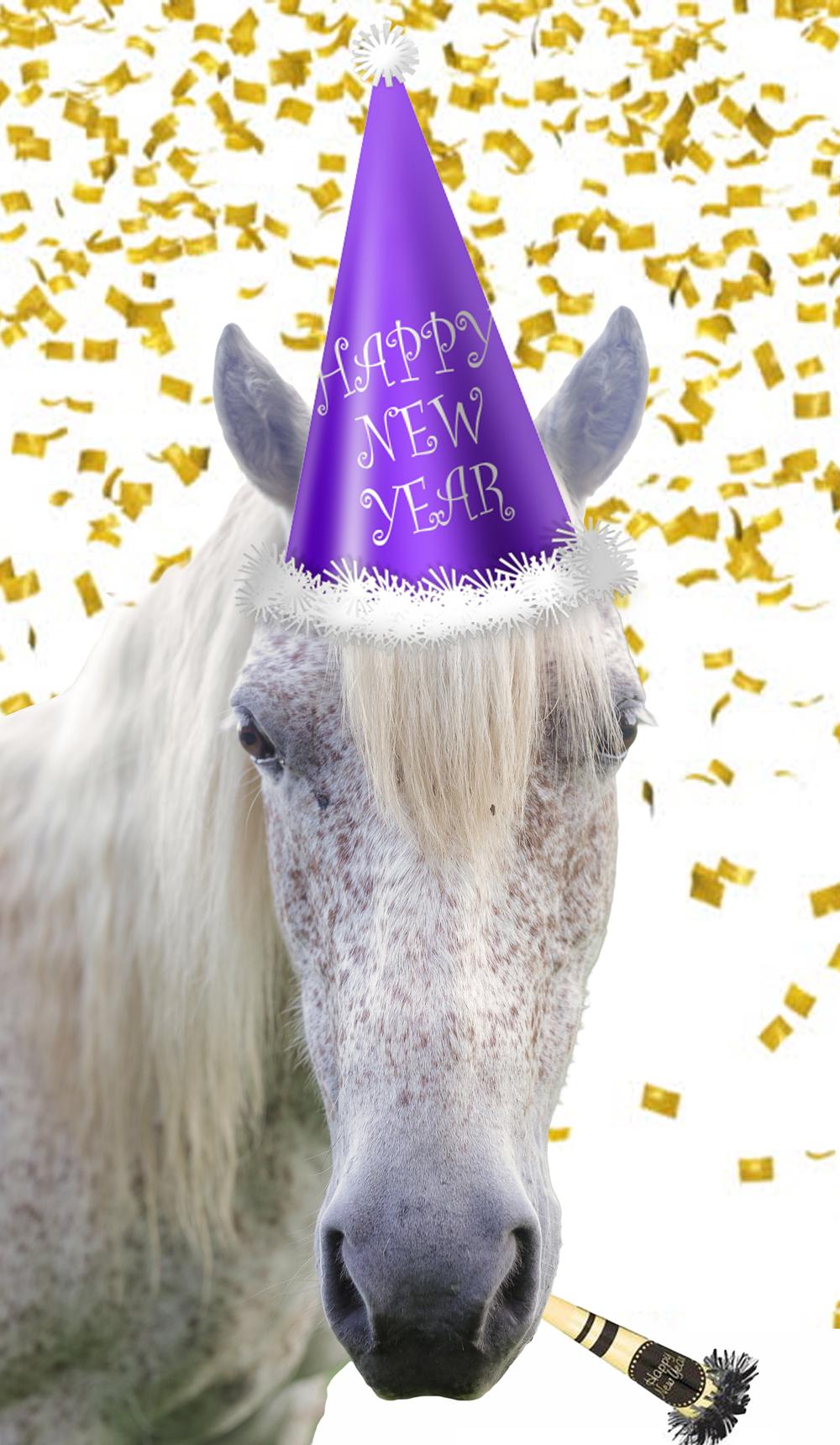 New years Horse.jpg