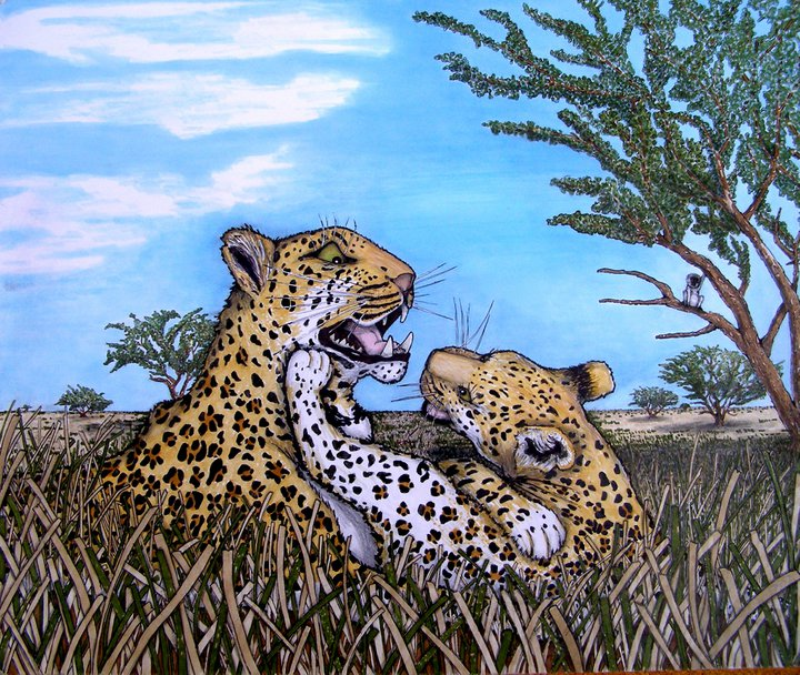 leopards1.jpg